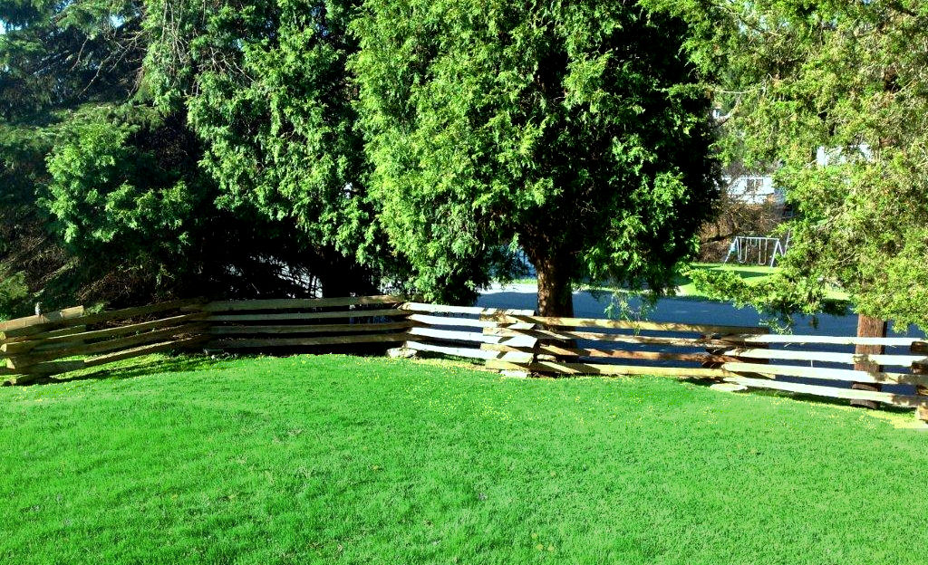 Snake Rail Fence Treated Wvsr